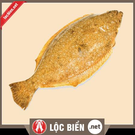 Cá bơn Hàn Quốc vàng